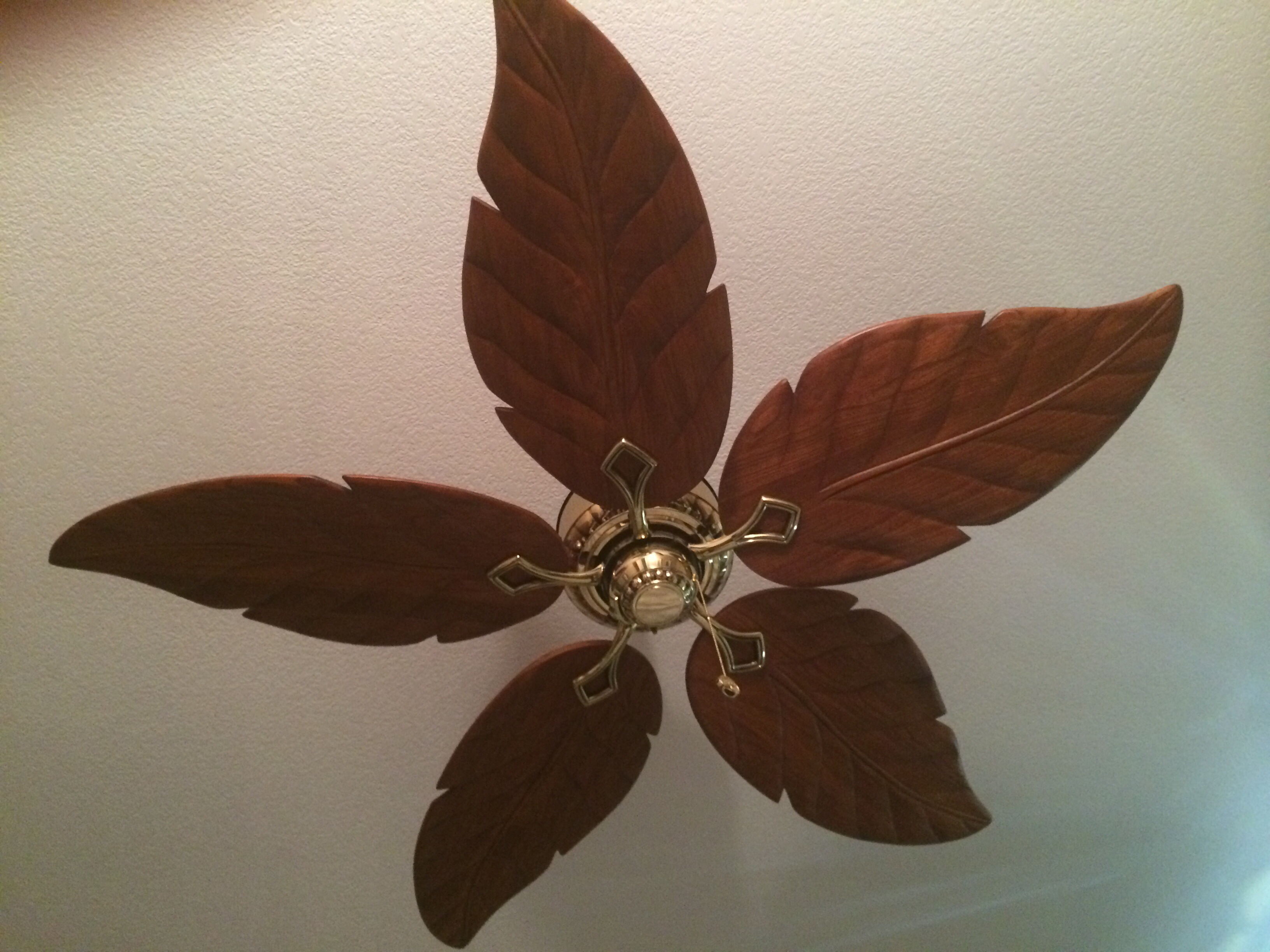 Life love and ceiling fans nova cadamatre 20140527 093132g aloadofball Choice Image